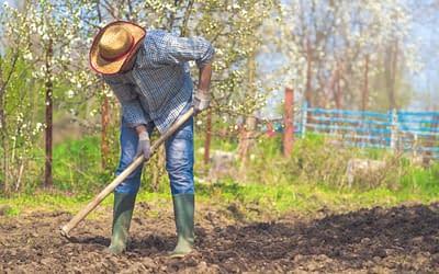 Les avantages de l'agriculture paysanne
