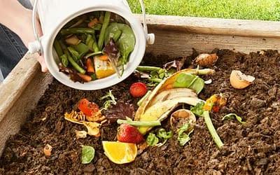 Le compostage ; le dernier recours pour éviter le gaspillage